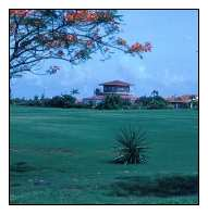 Cancun Golf Course