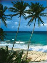 Barbados Holidays and more at Holidaysplease.co.uk